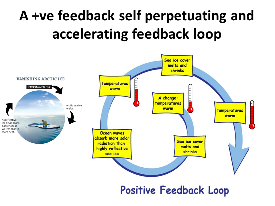 Positive Feedback Loop Polar Ice Wiring Diagrams - Wiring ...
